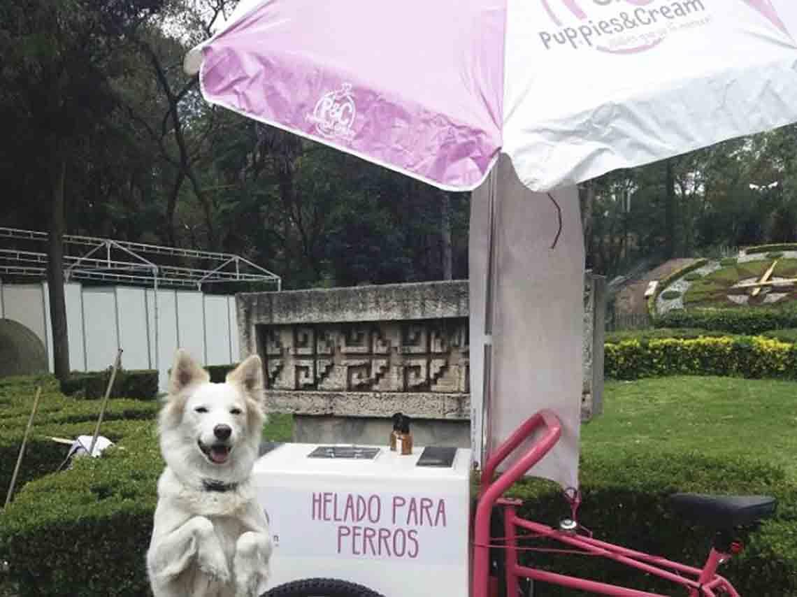 Helados para perros en México Puppies & Cream