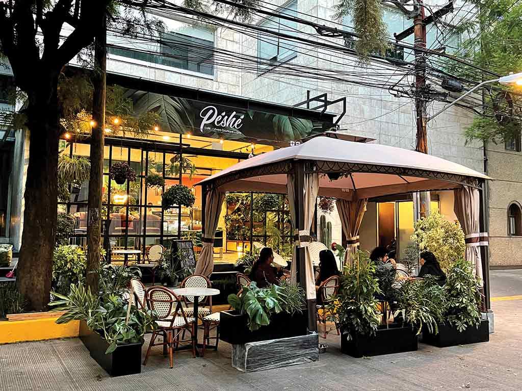 Péshé: el oasis para los amantes de plantas