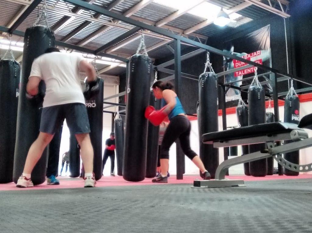 Aprende a boxear en Boxing Pro