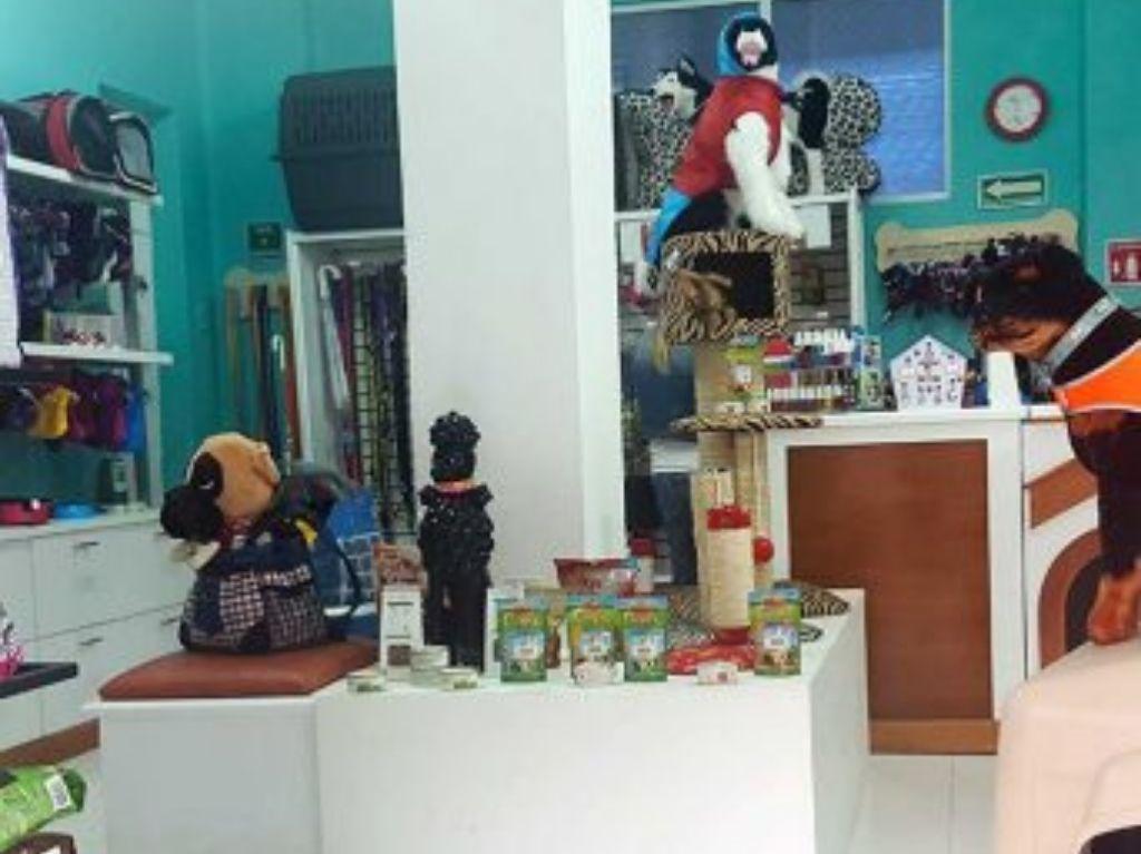 Llao's Pet: Spa y tienda para perros